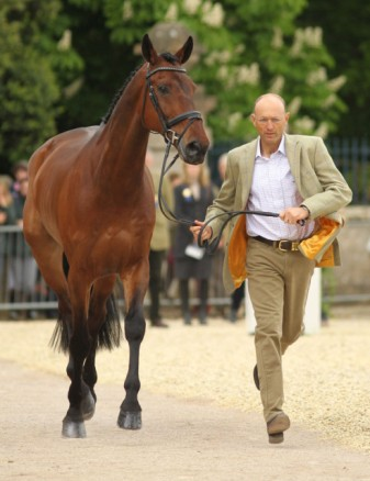 Bill Levett and Shannondale Titan, Badminton 2014